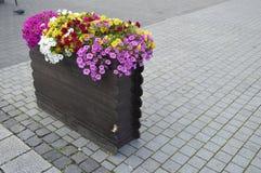 Arreglo floral con las flores multicoloras Foto de archivo libre de regalías