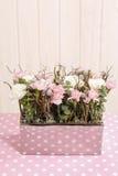 Arreglo floral con los claveles rosados y blancos Imagen de archivo libre de regalías