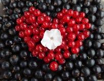 Arreglo floral de la baya del verano en la forma de un corazón Foto de archivo libre de regalías