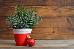 Arreglo natural de la Navidad y chuchería roja Fotografía de archivo