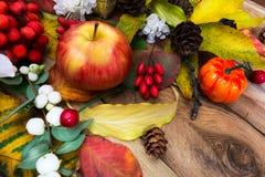 Arreglo rústico de la acción de gracias con la calabaza, manzana, snowberry Imagen de archivo libre de regalías