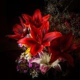 Arreglo rojo del Daylily con otras flores Imágenes de archivo libres de regalías
