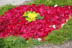 Arreglos florales Fotografía de archivo