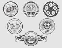Arrendamentos & excursões da bicicleta Fotografia de Stock Royalty Free