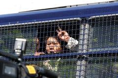 arresterad person som protesterar tibet arkivfoto