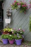 Arresti e senta l'odore dei fiori fotografia stock