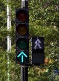 Arresti gli indicatori luminosi Fotografia Stock