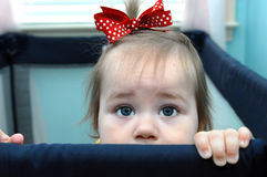 Arresting Eyes. Baby girl stands at her play pen rim and begs with beseaching eyes to be lifted out of her captivity.  She has a red polka dot ribbon in her hair Royalty Free Stock Photos
