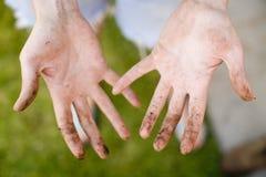 Arrière-cour 60 de jardinage Photo libre de droits