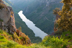Arribes del Duero river, Salamanca, Spain. Panoramic view from above. Royalty Free Stock Images