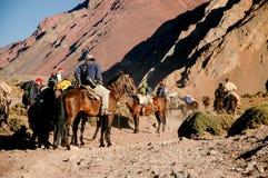 Arrieros en Aconcagua Lizenzfreie Stockfotografie