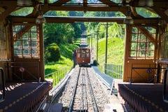 Arrivée bleue de jour d'été d'arbres de Forest Tram Wooden European Uphill photographie stock libre de droits