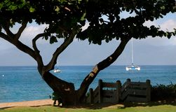 Arrival in Maui. First shot I took while in Maui was over in Whaler's Village Royalty Free Stock Images