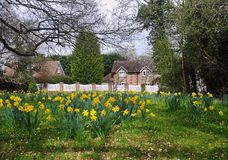 Arrival of Spring in an English Hamlet Stock Image