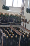 Arrolhar de Champagne Foto de Stock Royalty Free