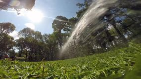 Arrosage de la pelouse avec de l'eau clips vidéos