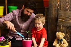 Arrosage de soin de fleur Engrais de sol P?re et fils Jour de p?res Jour de famille greenhouse jardiniers heureux avec le ressort images stock