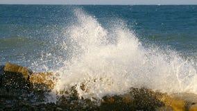 Arrosage des vagues Image libre de droits