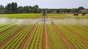 Arroseuse d'irrigation de l'eau images libres de droits