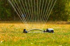 Arroseuse de jardin Image libre de droits