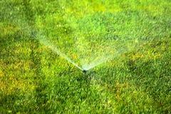 Arroseuse de jardin sur la pelouse verte Photos stock
