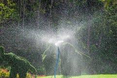 Arroseuse de l'eau dans le jardin Photographie stock libre de droits