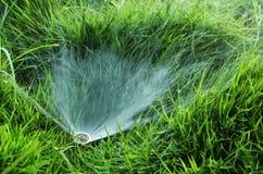 Arroseuse de l'eau de pelouse Images stock