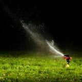 Arroseuse de pelouse Photo stock