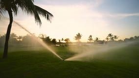 Arroseuse de terrain de golf sur le fairway pendant le coucher du soleil d'or banque de vidéos