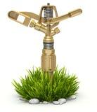 Arroseuse en laiton de l'eau de jardin sur l'herbe de buisson Image stock