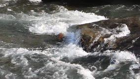 Arrosez circuler sur le cours pierreux, rivière d'Ursul, Altai banque de vidéos