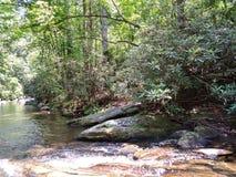 Arrosez l'écoulement d'arbres de roches de poissons d'espace libre de montagne de crique de rivière frais images libres de droits