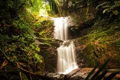 Arrosez l'automne au village vivant d'héritage de racines, Nongblai, Meghalaya Images libres de droits