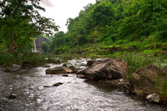 Arrosez l'entrée au-dessus des roches dans une forêt verte abondante photos stock