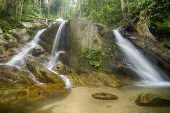 Arrosez le courant et la belle cascade entourés par la forêt verte Image stock