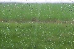 Arrosez les baisses sur le verre avec le fond vert naturel Image stock