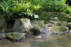 Arrosez pour le rituel de purification en Pura Tirta Sudamala, Bangli, Bali photos libres de droits
