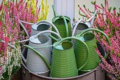 Arrosoirs verts et gris en métal photos stock