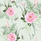 Arrossiscono i mazzi rosa su fondo verde chiaro Modello senza cuciture con i fiori e le erbe selvaggi delicati delle rose royalty illustrazione gratis