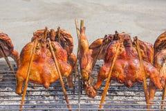 Arrostisca col barbecue il pollo sulla stufa della griglia in ristorante tailandese, all'aperto Fotografia Stock
