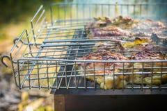 Arrostisca col barbecue la griglia Immagini Stock