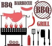 Arrostisca col barbecue la griglia Fotografie Stock Libere da Diritti