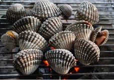 Arrostisca col barbecue la griglia che cucina i frutti di mare, conchiglie del cuore edule che cucinano sul gril fotografia stock libera da diritti