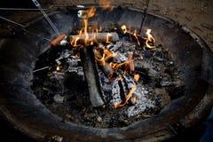 arrosto caldo del marshmellow dei cani Fotografie Stock