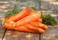 Сarrot vegetable Royalty Free Stock Photos