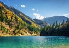 Arrow竹湖的美丽的景色用天蓝色的水晶水 免版税库存图片