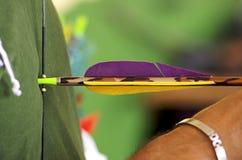 Arrow. An arrow put on a bow Royalty Free Stock Image