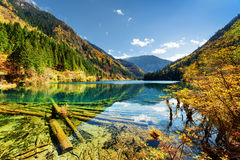 The Arrow Bamboo Lake with crystal clear water among mountains Stock Photo