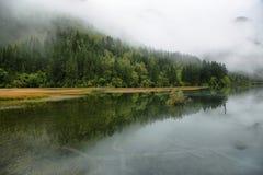 Arrow Bamboo lake i in Jiuzhaigou, China, Asia Royalty Free Stock Photography