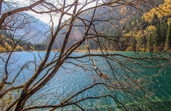 Arrow Bamboo Lake,Jiuzhaigou,north of Sichuan province, China. Jiuzhaigou Valley Scenic and Historic Interest Area and World Heritage Site Stock Images